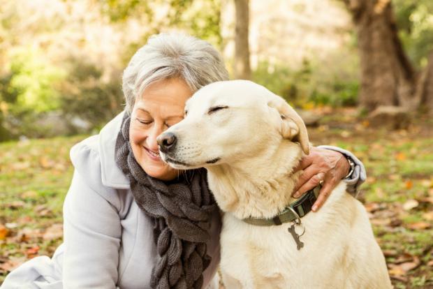 Resultado de imagen para mascotas y tercera edad